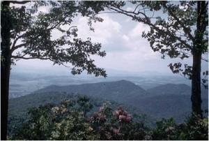 What to Do in Asheville - The Blue Ridge Parkway
